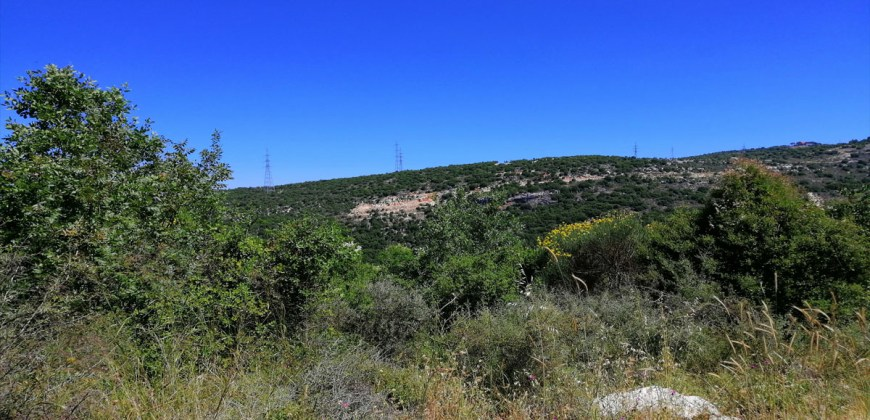 Land for sale Mrah El Haj Batroun Area 1530Sqm