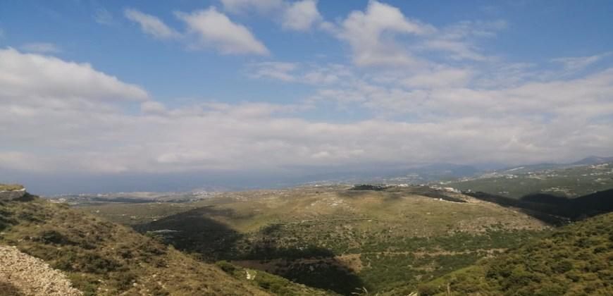 Land for Sale Bejdarfil Batroun Area 1313Sqm