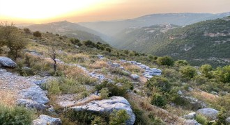 Land for Sale Kharbeh Jbeil Area 62611Sqm