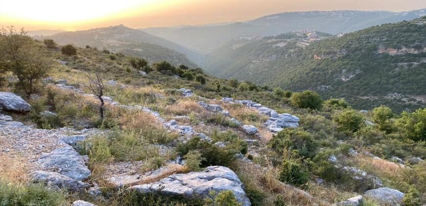 Land for Sale Kharbeh Jbeil Area 62611Sqm