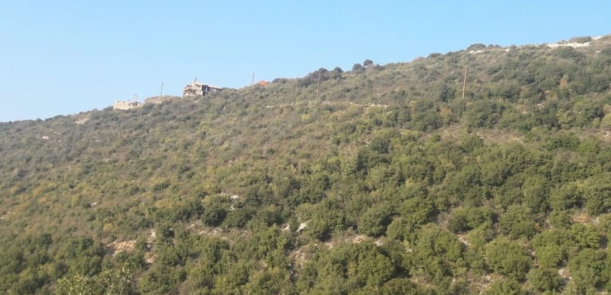 Land for Sale Abdelali Batroun Area 5875Sqm