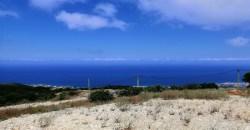 Land for Sale Chmout Jbeil Area 12100Sqm