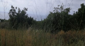 Land for sale Smar Jbeil Batroun Area 1200Sqm