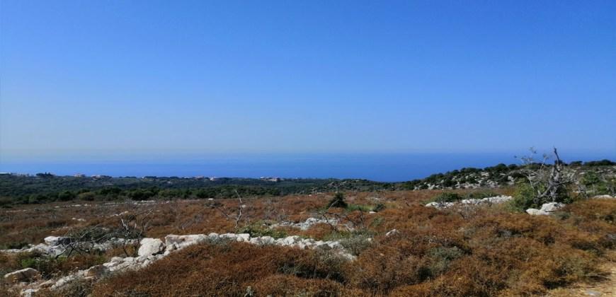 Land for Sale Gharzouz Jbeil Area 96050Sqm