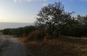 Land for Sale Monsef Jbeil Area 652Sqm
