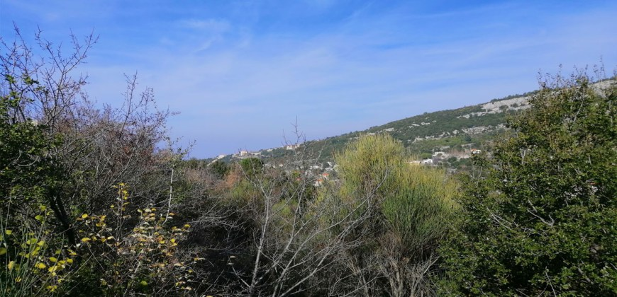Land for Sale Saki Rechmaiya Jbeil Area 2330Sqm