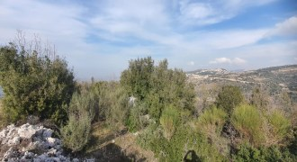 Land for Sale Bchaaleh Batroun Area 1506Sqm