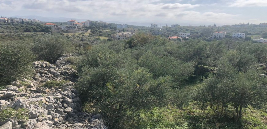 Land for Sale Monsef Jbeil Area 840Sqm