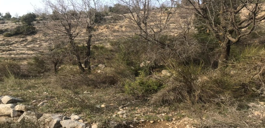 Land for Sale Mechmech Jbeil Area 1122Sqm