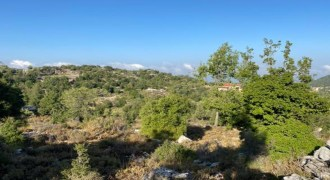 Land for Sale Mechmech Jbeil Area 1580Sqm