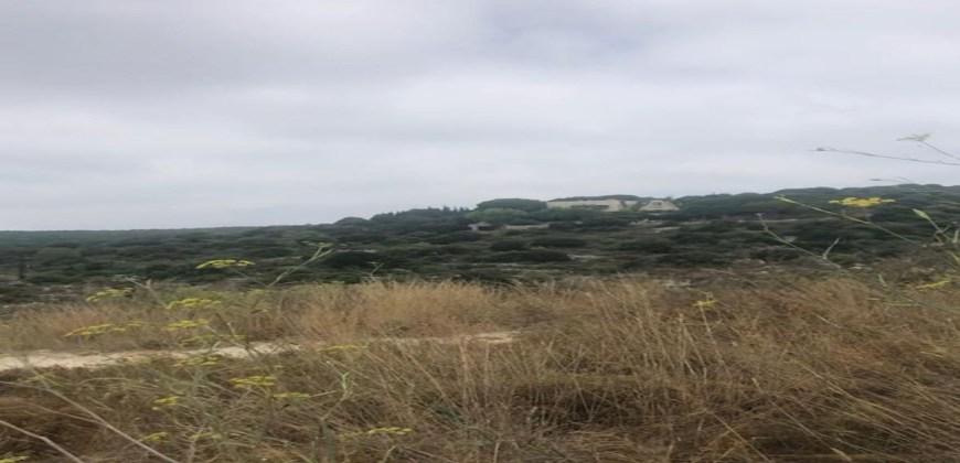 Land for Sale Bekhaaz Jbeil Area 1150Sqm
