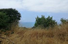 Land for Sale Berbara Jbeil Area 855Sqm