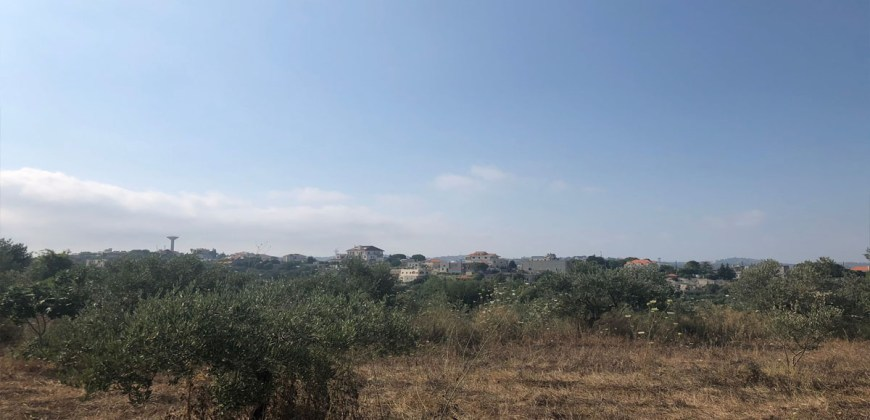 Land for sale Kfifan Batroun Area 1995Sqm