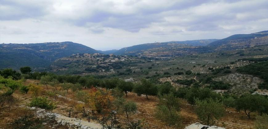Land for Sale Bejjeh Jbeil Area 6000Sqm