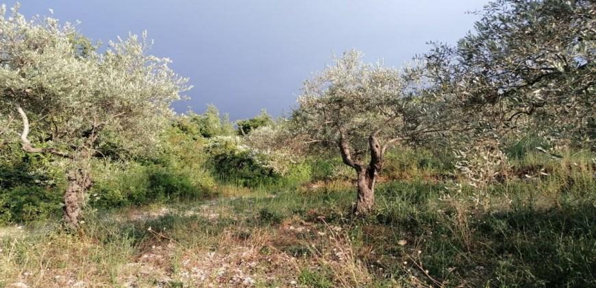 Land for Sale Chabtine Batroun Area 386Sqm