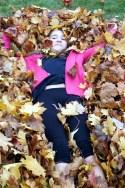 Leaf bed