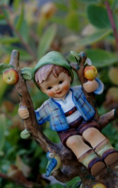 Apple tree boy