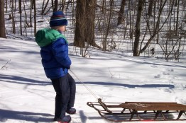 Boy and sled