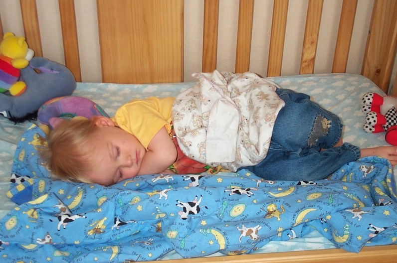 Sleeping Paxton