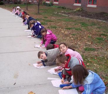 Outdoor science lesson