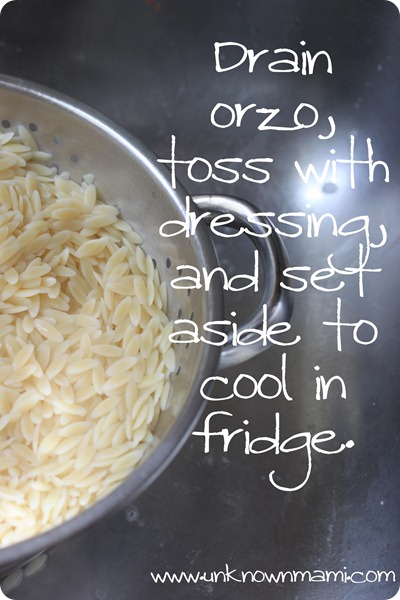 Orzo-in-collander