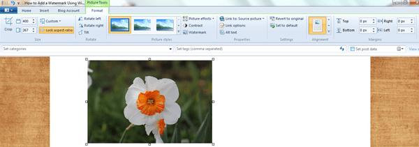 Watermark-in-Windows-Live-Writer