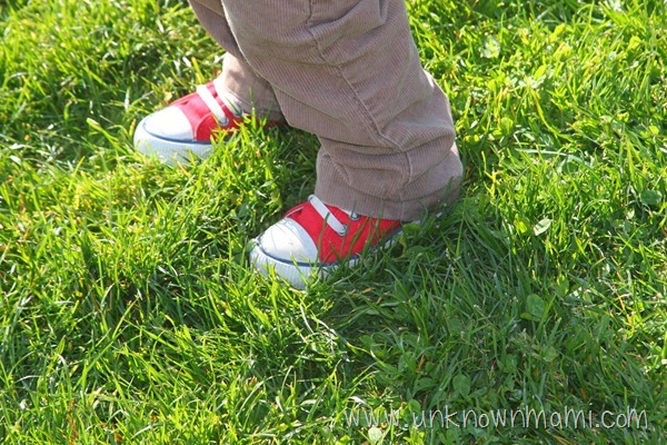 Small red Converse in grass