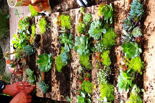 Making a pallet garden