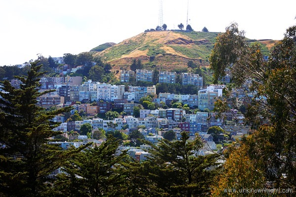 Hill_in_San_Francisco-unknownmami