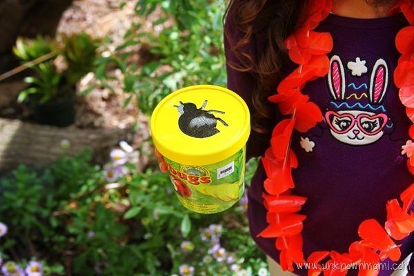 Ladybugs for the garden