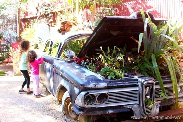 car used as planter