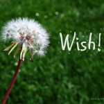 I Wished for Money and I Got It (Wednesday Wishes)