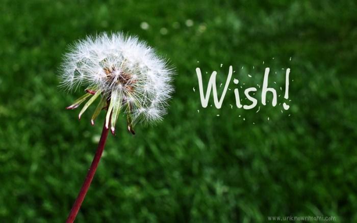 The Wishing Effect  (Wednesday Wishes)
