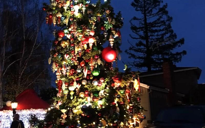 Christmas Tree Lane in San Carlos (Sundays In My City)