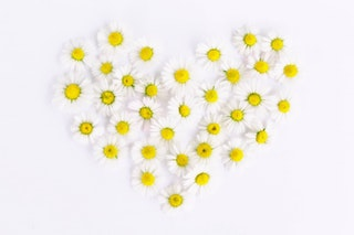 yellow daisies in the shape of a heart to symbolize hope