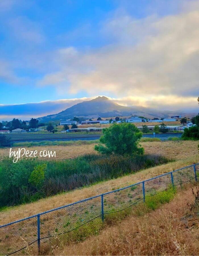 cali coast road trip scenic view- itinerary