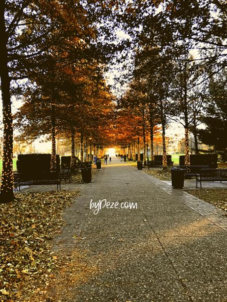 vander veer park in the autumn things to do in davenport