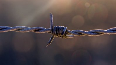 Wire Joint Fence