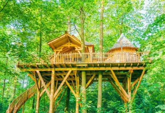 Une vue d'une cabane perchée au milieu des arbres