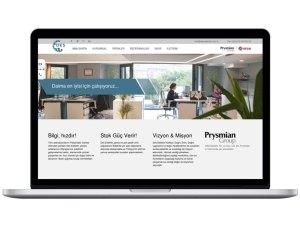 Des Elektrik Website Tasarımı
