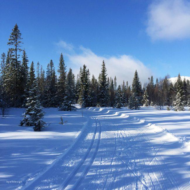 Åre - Langrenn - bye9design - cross country skiing
