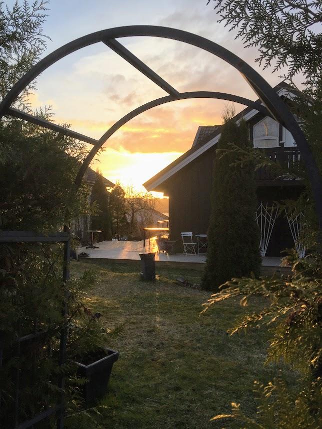 Nå skal hagen fornyes  - med tips og råd fra et hagekurs