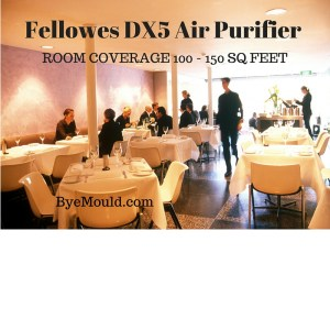 Fellowes DX5 Air Purifier
