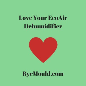 EcoAir Dehumidifier byemould damp best top mould