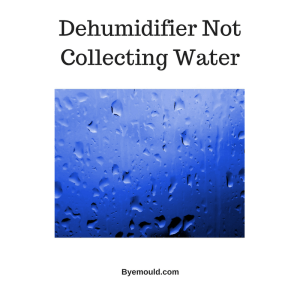 Dehumidifier Is Not Collecting Water (Fix Now)