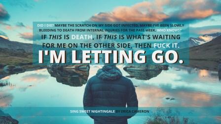 ssn-lettinggo
