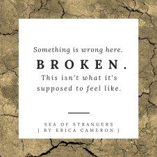 SeaofStrangers-SomethingIsBroken