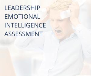 leadership emotional intelligence Assessment (1)