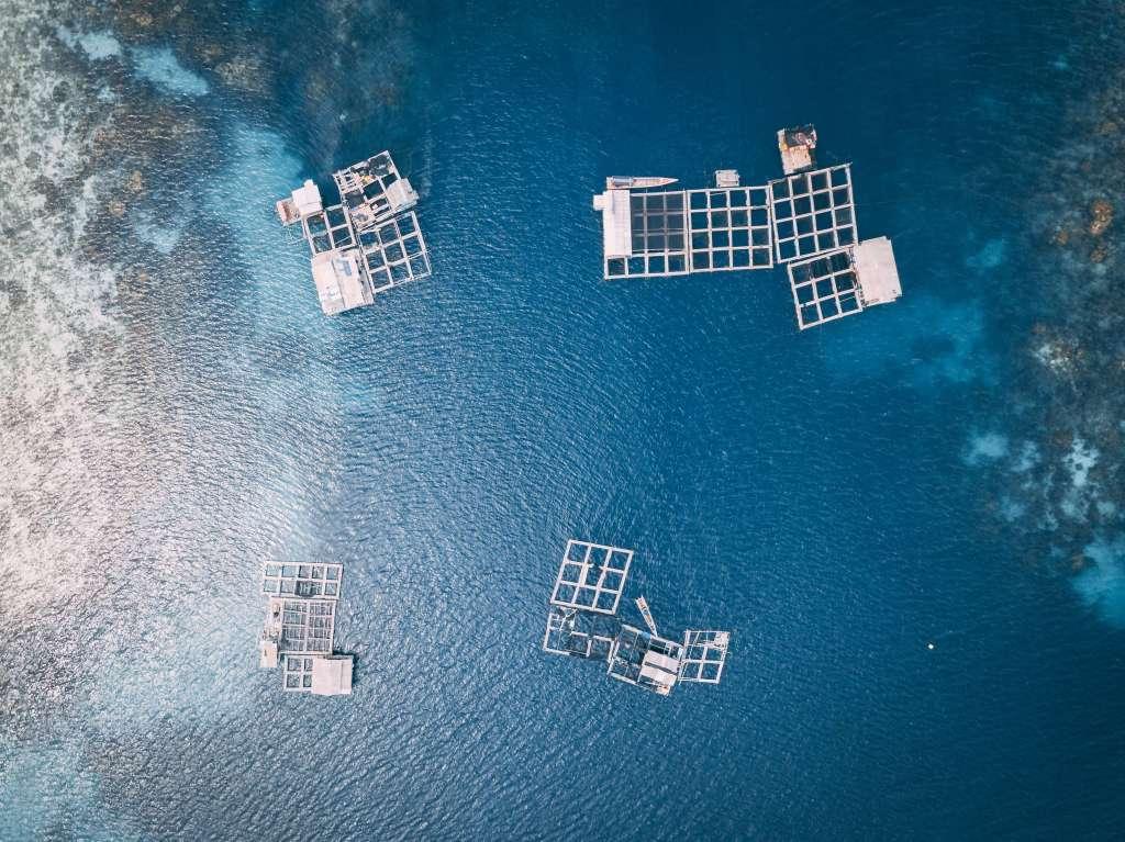 advantages and disadvantages of aquaculture