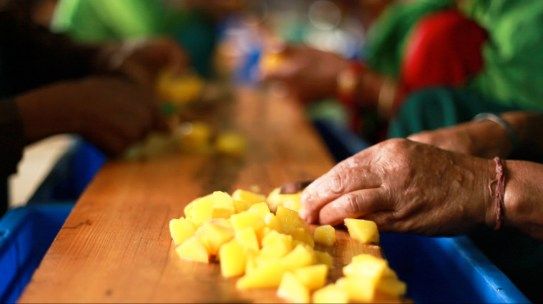 hand cutting fruit